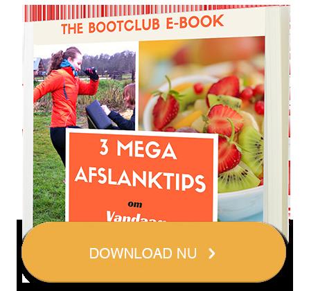 Klik hier om het gratis E-book te ontvangen!